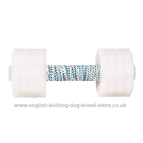 Dog Dumbbells Obedience