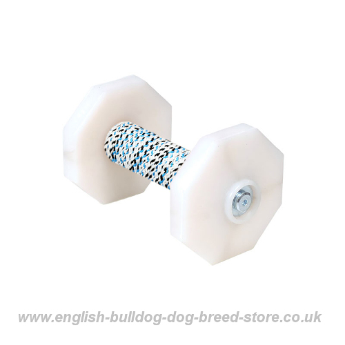 Training Dumbbels for Dogs UK
