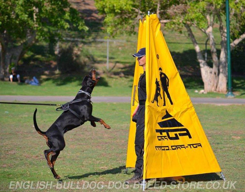 Schutzhund Blinds for Sale