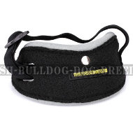 Dog Training Pouch Ball Arm Pocket to Develop Attention