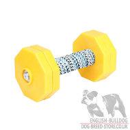 Dog Training Wooden Dumbbell for IGP and Retrieve Work