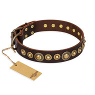 "English Bulldog Collar Brown Leather ""Ancient Warrior"", Artisan"