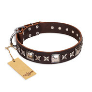 "English Bulldog Collar Brown ""Perfect Impression"" FDT Artisan"