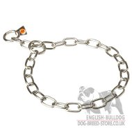English Bulldog Collar Choke Chain Fur Saver of Stainless Steel