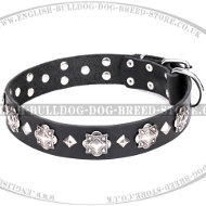 "English Bulldog Collar Leather ""Code of Chivalry"" by FDT Artisan"