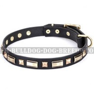 "English Bulldog Collar by FDT Artisan ""Golden Elegance"""