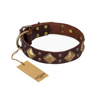 "English Bulldog Collar ""Golden Square"" Brown Leather FDT Artisan"