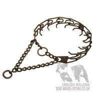 English Bulldog Collar with Antique Copper Plated Steel Prongs