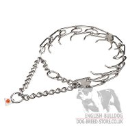 English Bulldog Collar Prong of Stainless Steel, Herm Sprenger
