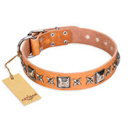 "English Bulldog Collar ""Silver Chic"" Beige Leather FDT Artisan"