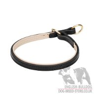 Nappa Padded Leather Choke Collar for Bulldog Training