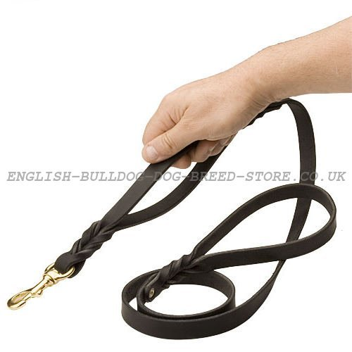 Dog Lead with Two Handles