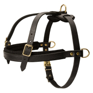 Leather Dog Harness for Walking and Pulling, Dog Pulling Harness