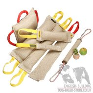 Super Set of Six Jute Bite Tugs and Three Gifts - Great Offering