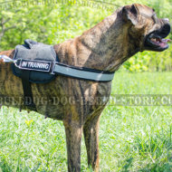 K9 Boxer Harness of Nylon with Patches and Reflective Strap
