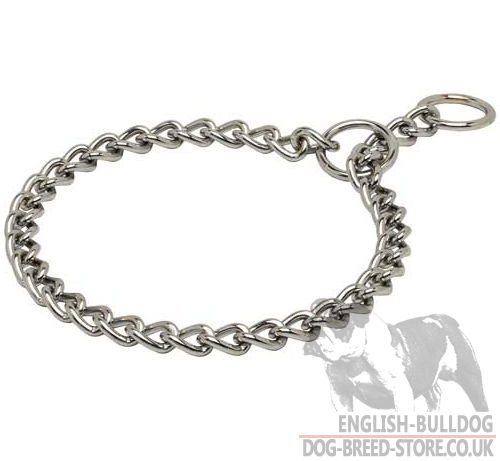 Bestseller! Choker Dog Collar Chrome Plated for Bulldog Behavior Control