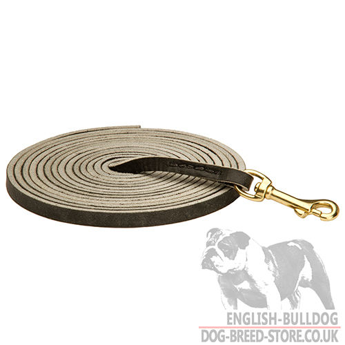 Tracking Lead for Loose Leash Walking of Black Leather (10 mm)