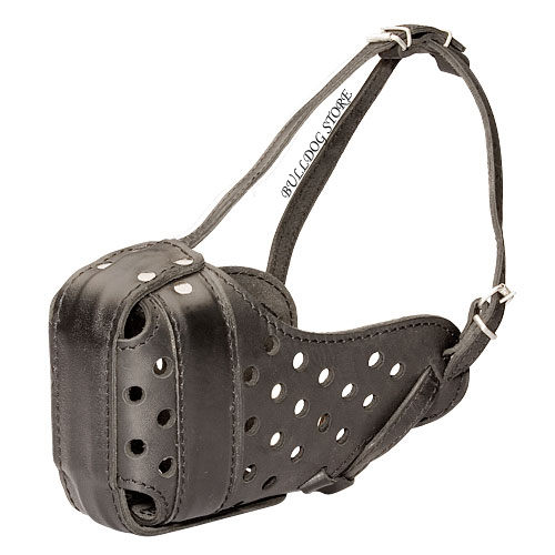 Bestseller! Strong Dog Muzzle for American Bulldog, Natural Leather