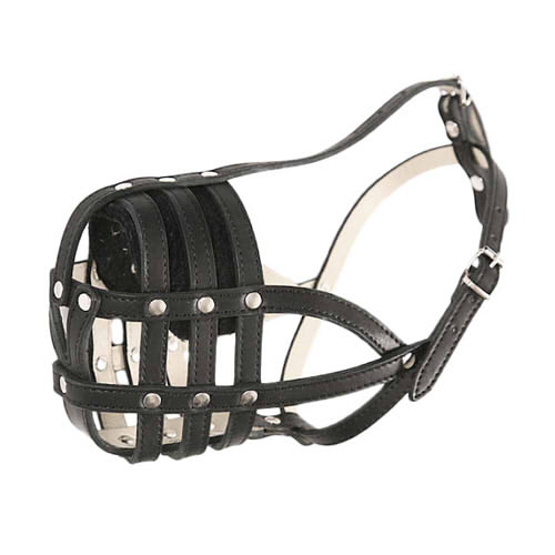 Best Dog Muzzle for English Bulldog, Nappa Lined Leather