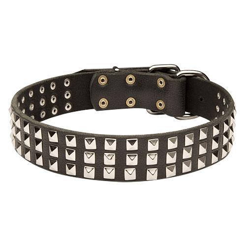 Leather Dog Collar with Pyramid Studs for English Bulldog