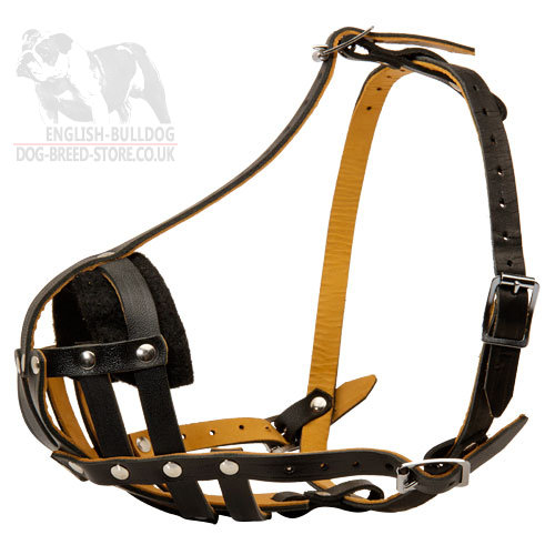 Small Dog Muzzle Royal Nappa Lined Leather for French Bulldog