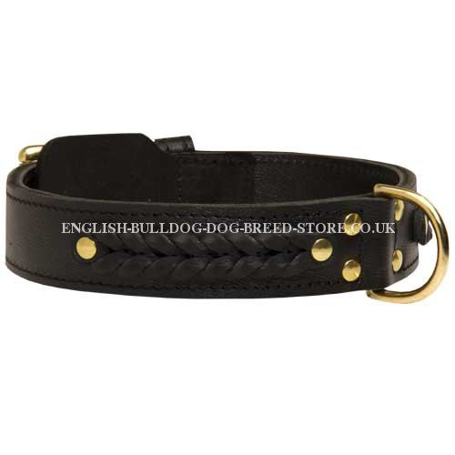 Wide Leather Dog Collar for English Bulldog with Braided Decor