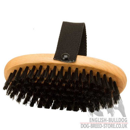 Bestseller! Dog Grooming Brush of Wood with Stiff Bristle, Best for Bulldogs