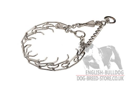 Bulldog Collar for Behavior Correction, Martingale Style