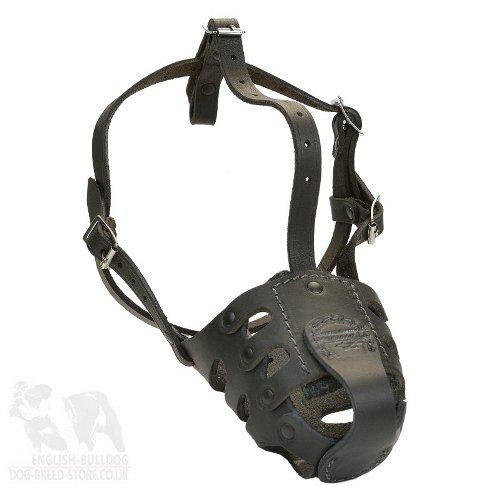 Dog Muzzle for American Bulldog Training and Walking of Leather