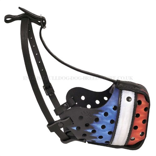 Dog Muzzle France for Bulldog with Hand Painted French Flag