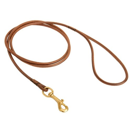 Bestseller! Round Lead For Bulldog, Show Dog Leash of the Highest Quality
