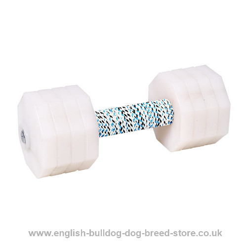 """The Tool of Power"" Dumbbell for Your Dog of White Plastic, 2 kg"