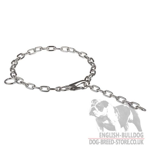 English Bulldog Collar Adjustable Chain Fur Saver with Snap Hook