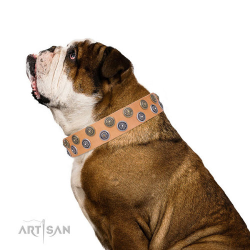 "English Bulldog Leather Collar ""Precious Sparkle"" FDT Artisan"
