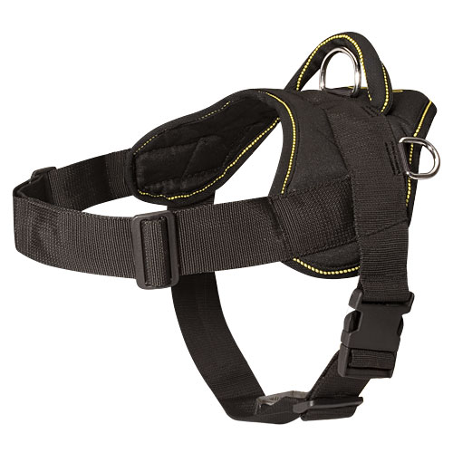 Bestseller! Nylon Dog Harness for French Bulldog, Multipurpose, Best