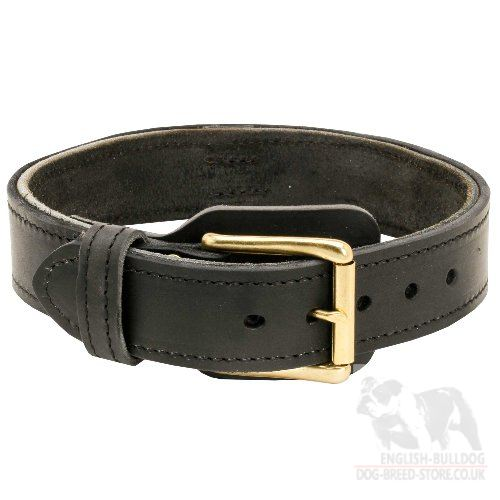 Large Dog Collar of Wide 2-Ply Leather for Bulldogs - Click Image to Close
