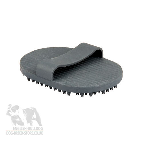 Best Rubber Dog Brush