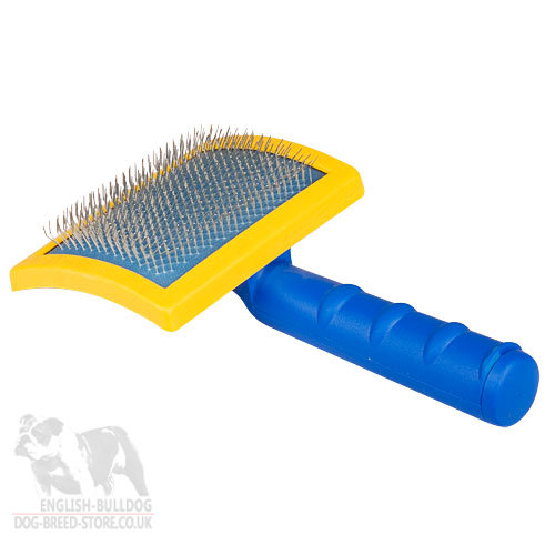 Best Brush For Wire Haired Dogs