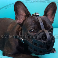 Leather Dog Muzzle Soft Felt Padded for French Bulldog