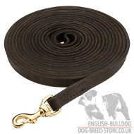 Long Dog Lead Wide Leather for Bulldog Tracking, Training 20 mm