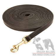 Long Dog Leash for Bulldog Lead Training and Tracking, 10 mm
