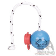 Magnetic Dog Training Ball Top-Matic with MAXI Power-Clip for Bulldog
