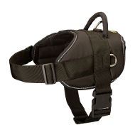 Pug Dog Harness UK, Nylon, Waterproof, Omni-Purpose