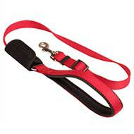 Dog Car Seat Belt and Walking Leash for Bulldog, Super Combo