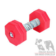 Obedience Dumbbell for Dogs Retrieve and Schutzhund Training