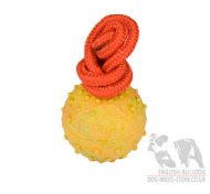Durable Dog Toy, Hollow Rubber Ball for English Bulldog