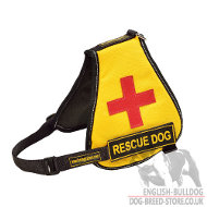 Service Dog Vest for English Bulldog of Nylon with Patches
