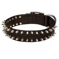 Shining Spiked Strong Nylon Dog Collar for English Bulldogs