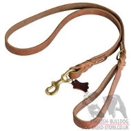 Training English Bulldog Walk Leash of Leather, Advanced