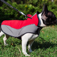 Super Comfortable, Stylish and Warm French Bulldog Coat